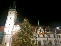 Olomouc Churs & Tree